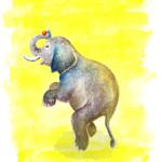 il 02 agua para elefantes